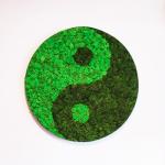 Yin and Yang Скандинавски мъх в кръгла рамка -жив декор за стена