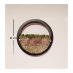 Скандинавски мъх в кръгла рамка-жив декор за стена