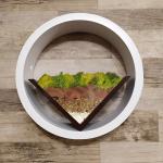 Скандинавски мъх в кръгла рамка-терариум за стена